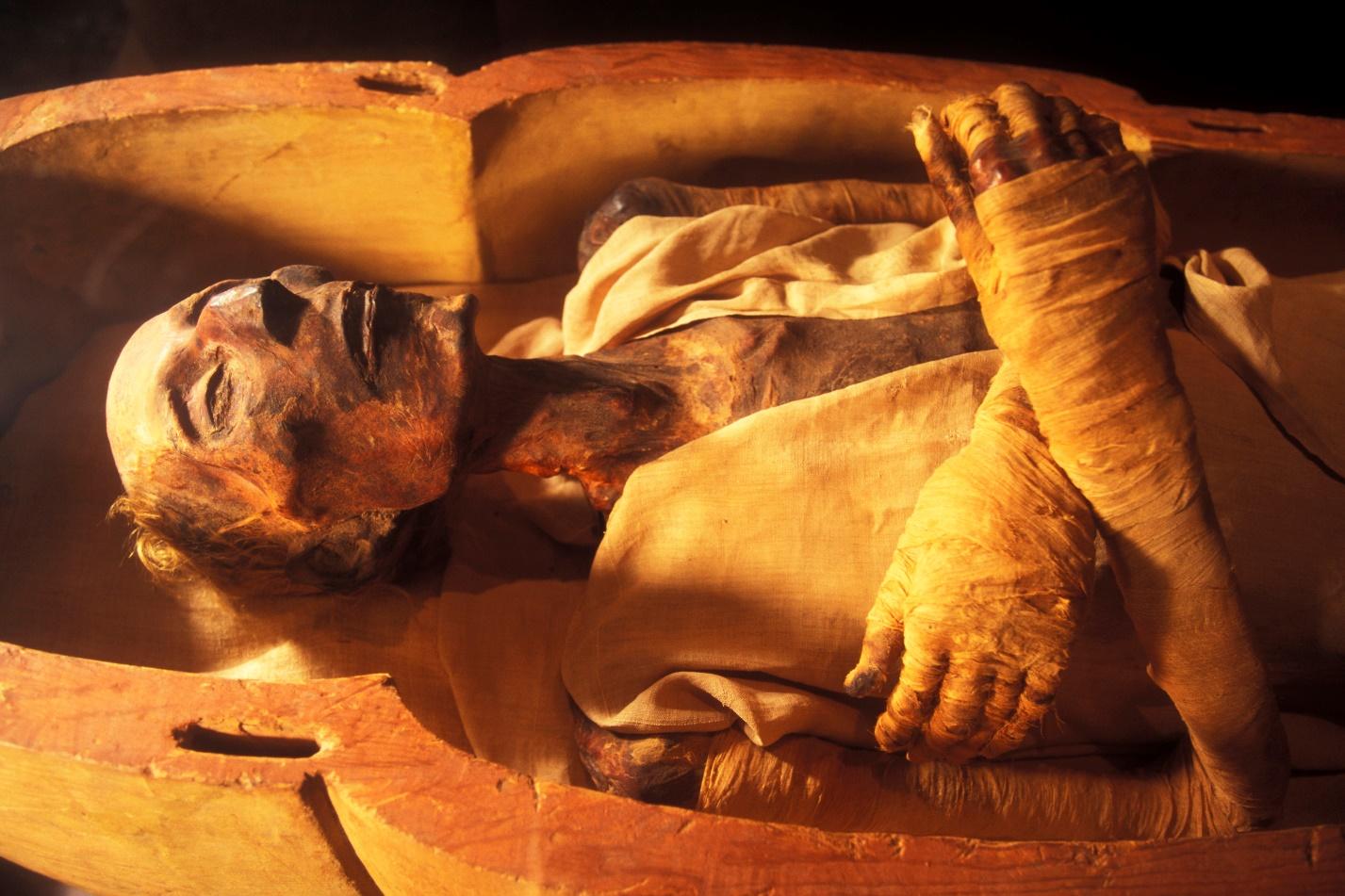E:\Downloads\history-lists-5-great-mummy-discoveries-ramesses-ii.jpg